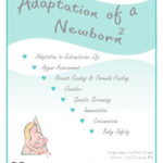 Adaptation of a Newborn Home Course